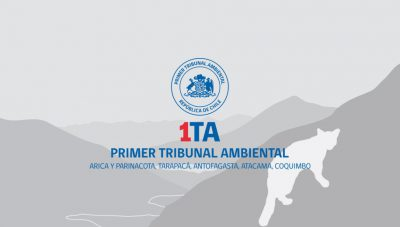 tribunal-tcit